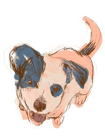 https://imgc.artprintimages.com/img/print/dog-portrait-maisie_u-l-q1eat5u0.jpg?p=0