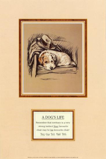 Dog's Life I-Mac-Art Print