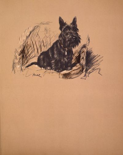 Dog's Life II-Mac-Premium Giclee Print