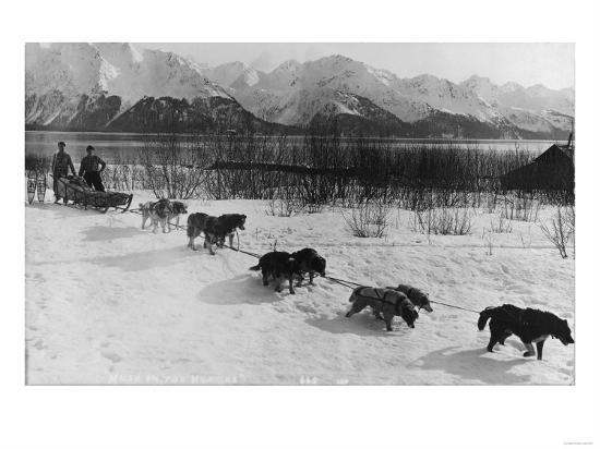 Dog Team Photograph - Alaska-Lantern Press-Art Print