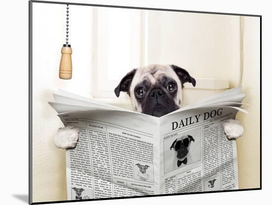 Dog Toilet-Javier Brosch-Mounted Photographic Print