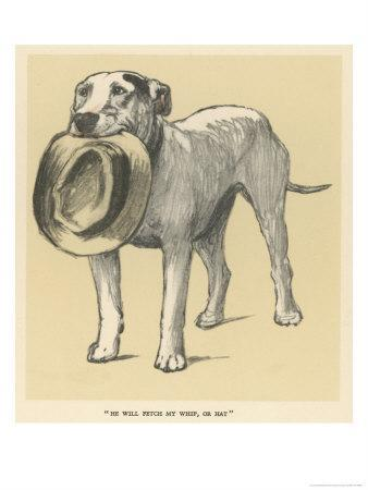 https://imgc.artprintimages.com/img/print/dog-trained-to-fetch-his-master-s-hat_u-l-osfxy0.jpg?p=0