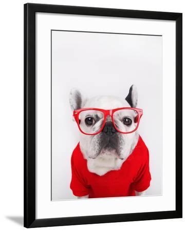Dog with Eyeglasses-retales botijero-Framed Photographic Print