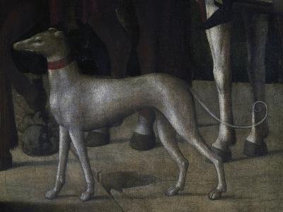Dog-Michelle da Verona-Giclee Print