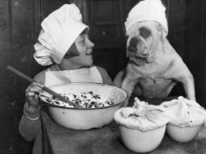 Doggy Chef