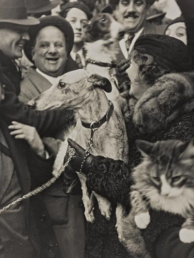 Dogs and Cats in their Arms with their Owners-Luigi Leoni-Photographic Print