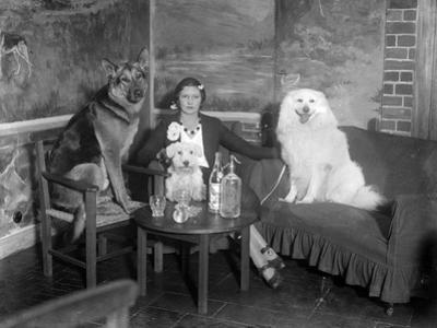 Dogs Club Cocktail Bar