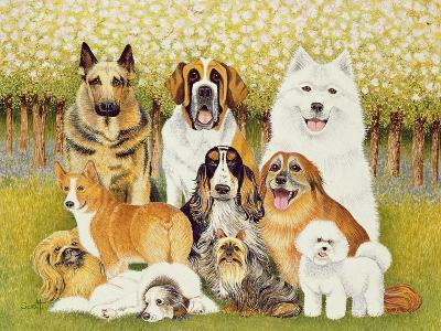 Dogs in May-Pat Scott-Giclee Print