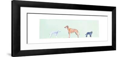 Dogs Panel I-Debbie Nicholas-Framed Photographic Print