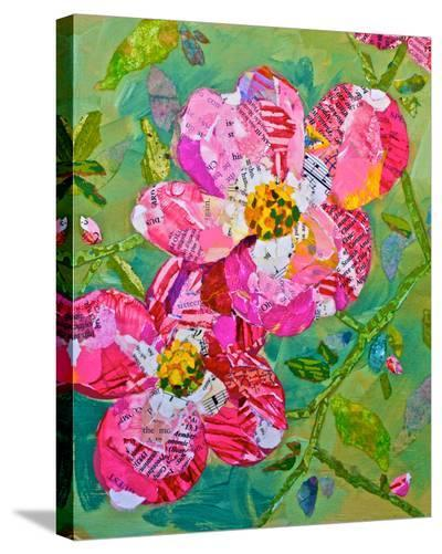 Dogwood Blossoms--Stretched Canvas Print