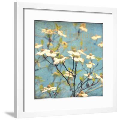 Dogwood I - Blossoming Tree-Amy Melious-Framed Premium Giclee Print
