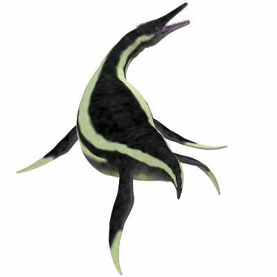 Dolichorhynchops Marine Reptile-Stocktrek Images-Art Print