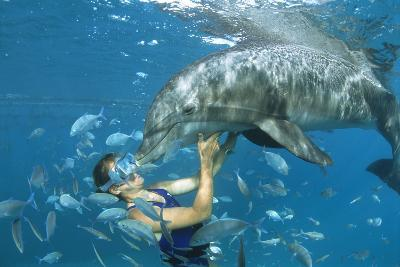 Dolphin And Swimmer-Alexis Rosenfeld-Photographic Print