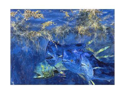 Dolphin Cruising the Weed Line, 1985-Stanley Meltzoff-Giclee Print