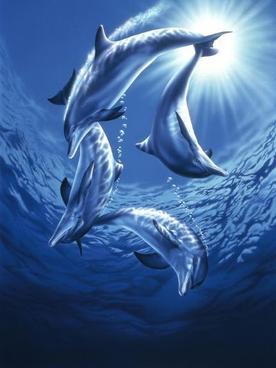 Dolphin Swing-Joh Naito-Giclee Print