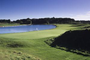 Blackwolf Run Golf Club River Course by Dom Furore