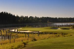 Whitefish Lake Golf Course by Dom Furore