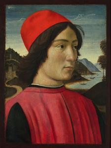 Portrait of a Man, C.1490 by Domenico Ghirlandaio