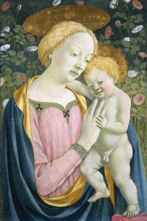 Madonna and Child, C.1445-1450