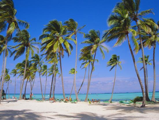 Dominican Republic, Punta Cana, West Indies-Jeremy Lightfoot-Photographic Print