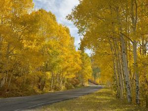 Black Canyon, Gunnison National Park, Colorado, USA by Don Grall