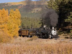 Durango and Silverton Narrow Gauge Railroad, Colorado, USA by Don Grall