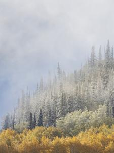 Fog from Cold Front That Deposited Snow in the Higher Elevations by Don Grall