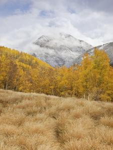 Fresh Snow on the Peaks Above the Upper Animas Valley by Don Grall
