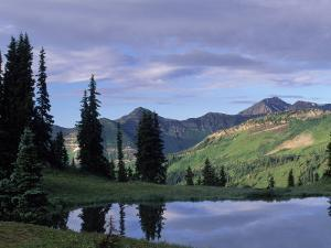 Sky and Tree Reflected in River, Gunnison Nf, CO by Don Grall