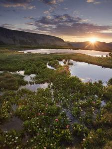 Sunrise in Porphyry Basin, an Alpine Basin in the San Juan Mountains of Colorado, USA by Don Grall