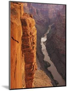 The Colorado River Courses Through Grand Canyon Np at Sunrise as Viewed from Toroweap Overlook by Don Grall
