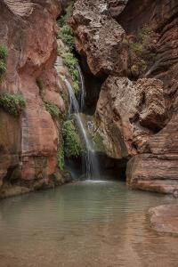 USA, Arizona, Grand Canyon National Park. Waterfall at Elves Chasm by Don Grall