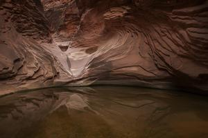 USA, Arizona, Grand Canyon NP. Sandstone Reflected in Pool by Don Grall