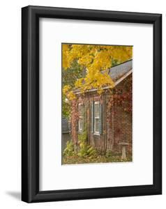 USA, Iowa, Mt Vernon. Brick House in Autumn by Don Grall