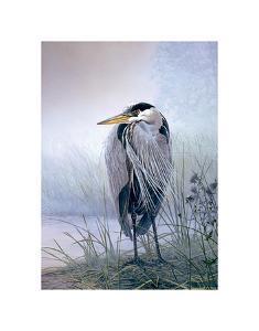 Brooding Heron by Don Li-Leger