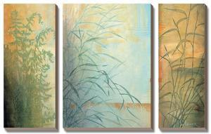 Ferns and Grasses by Don Li-Leger