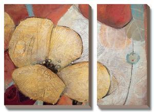 Full Blossom II by Don Li-Leger