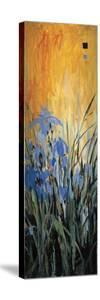 Golden Winged Garden II by Don Li-Leger