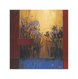 Iris Sunrise by Don Li-Leger