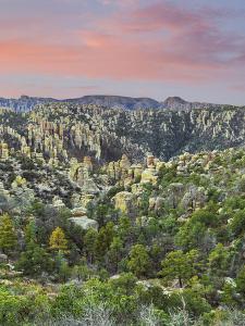 Arizona, Chiricahua National Monument. Sunrise on Rocky Landscape by Don Paulson