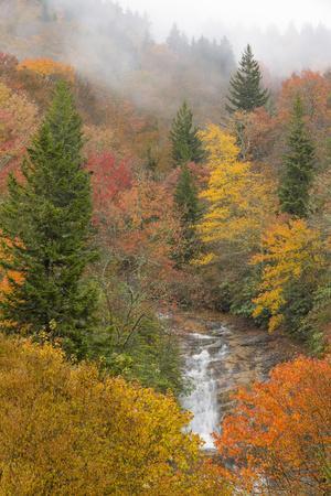 North Carolina, Bubbling Springs Falls. Autumn Scenic of the Falls