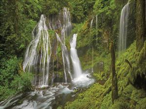 Panther Creek Falls V by Don Paulson