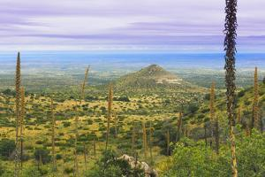 USA, Texas, Guadalupe Mountains NP. Landscape with Small Mountain by Don Paulson