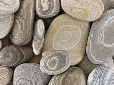 USA, Washington, Seabeck. Close-up of beach stones.