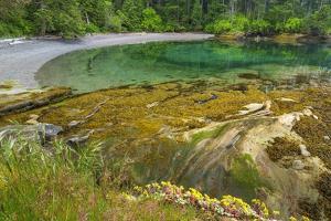 Washington State, San Juan Islands. Secluded Bay on Sucia Island by Don Paulson