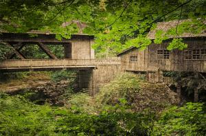 Cedar Mill and Covered Bridge by Don Schwartz