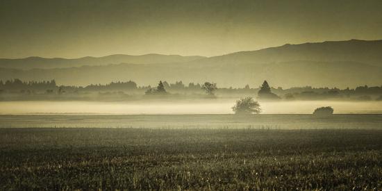 don-schwartz-schwartz-dawn-s-early-light