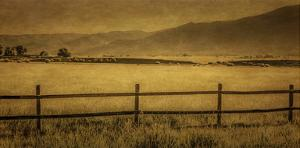 Schwartz - Yampa Valley Morning by Don Schwartz