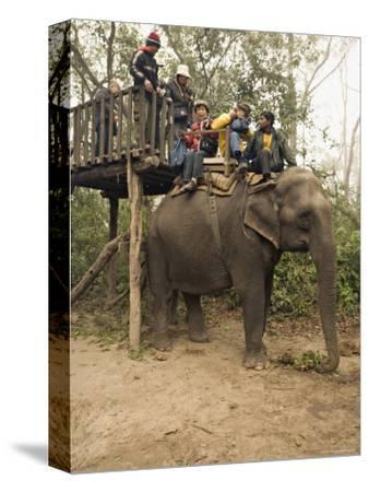 Japanese Tourists Board the Elephant That Will Take Them on Safari