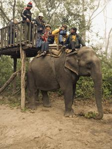 Japanese Tourists Board the Elephant That Will Take Them on Safari by Don Smith